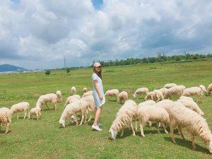 Cánh đồng Cừu 2 - Vũng Tàu - Suối Nghệ