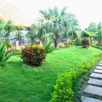 Gợi ý các điểm du lịch gần Sài Gòn cho dịp Tết
